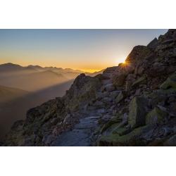 Wydruk na piance - W stronę słońca